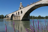 Pont St Benezet  France