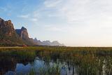 Khao San Roi Yot National Park Wetlands  Prachuap Kiri Khan  Thailand  Southeast Asia  Asia