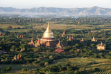 The Golden Stupa of Dhammayazika Pagoda Amongst Some Other Terracotta Buddhist Temples in Bagan