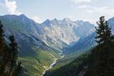 Swiss National Park  Engadine  Graubunden  Switzerland  Europe