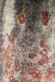 San Rock Art Hand Prints  Cederberg Mountains  Western Cape  South Africa  Africa