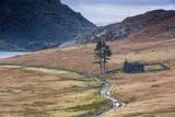 Cwmorthin Quarry  Gwynedd  North Wales  Wales  United Kingdom  Europe