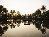 View of Lake at Sunset  Backwaters Near North Paravoor  Kerala  India  South Asia