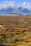 Willow Flats and Teton Range  Grand Tetons National Park  Wyoming  United States of America