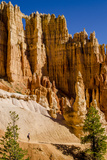 Hiking in Bryce Canyon National Park Utah  United States of America  North America