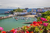 Tenby  Pembrokeshire  Wales  United Kingdom  Europe