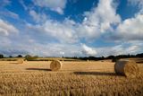 Baled Field  Gloucestershire  England  United Kingdom  Europe