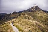 Hiker Trekking Rucu Pichincha Volcano  Quito  Pichincha Province  Ecuador  South America