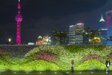 Vegetal Wall on the Bund and View over Pudong Financial District Skyline at Night  Shanghai  China