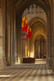 Looking Down an Aisle in Cathedrale Sainte Croix D'Orleans (Cathedral of Orleans)  Loiret  France
