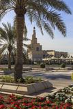Palm Trees and Flower Beds Along Al-Corniche  Qatar