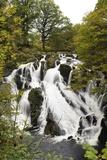 Swallow Falls in Autumn  Near Betwys-Y-Coed  on River Llugwy  Conwy  Wales  United Kingdom  Europe