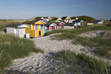 Colourful Beach Huts in Sand Dunes  South Sweden
