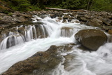 Cascades on Deception Creek  Mount Baker-Snoqualmie National Forest  Washington  USA