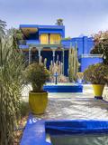 Majorelle Gardens  Marrakech  Morocco  North Africa  Africa