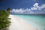 Tropical Island and Lagoon  Maldives  Indian Ocean  Asia