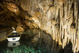 Stalagmites and Stalactites in the Beautiful Crystal Subterranean Cave  Bermuda  North America