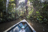 Canoe Boat Trip in Amazon Jungle of Peru  by Sandoval Lake in Tambopata National Reserve  Peru