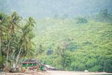 Sungai Pinang  West Sumatra  Indonesia  Southeast Asia