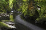 Fairy Glen in Autumn  Betwys-Y-Coed  Conwy Valley  Wales  United Kingdom  Europe
