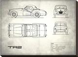 Triumph TR2 White