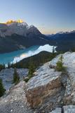 Peyto Lake at Sunrise  Banff National Park  Rocky Mountains  Alberta  Canada
