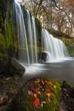 Sqwd Ddwli Waterfall  Near Pontneddfechan  Afon Pyrddin  Powys  Brecon Beacons National Park  Wales