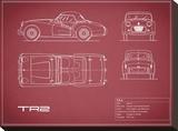Triumph TR2-Maroon