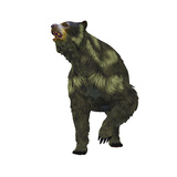 Front View of an Arctodus Short-Faced Bear