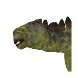 Close-Up of a Huayangosaurus Dinosaur Head