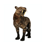 A Saber-Toothed Cat on White Background