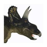 Nedoceratops Portrait