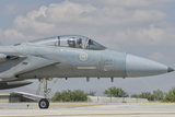 Nose Cone of a Royal Saudi Air Force F-15C