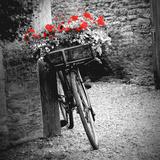 Flower Bike Square Reproduction d'art par Gail Peck