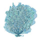 Teal Coral on White II Reproduction d'art par Jairo Rodriguez