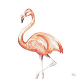 Flamingo Duo Square II