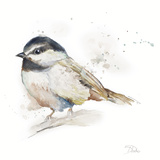 Watercolor Mountain Bird II