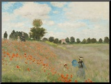Poppy Field  Near Argenteuil  c1873