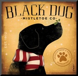 Black Dog Mistletoe