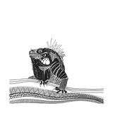 Iguana (Variant 1)