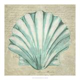 Seafoam Shell II