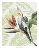Avian Paradise I