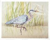 Heron & Reeds I