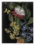 Dark Floral III