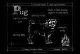 Blueprint Pug
