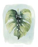 Paradise Palm Leaves I