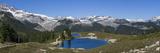 Elfin Lake Garibaldi