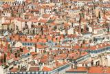 Lyon Rooftops II