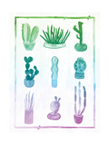 Ombre Cactus
