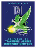 TAI Airline - Passengers Freight - Air Route Destinations between France and Africa  Asia